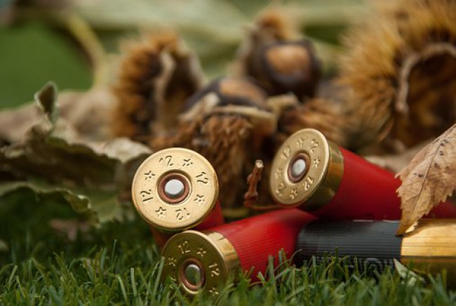 Open letter to European Commission due to the planned restriction on lead ammunition: REACH cannot be applied to hunters' use of lead gunshots over wetlands